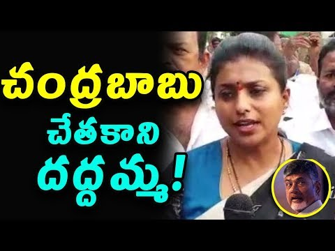YSRCP MLA Roja Sensanational comments on Chandrababu Govt|YSRCP MLA Roja| indiontvnews