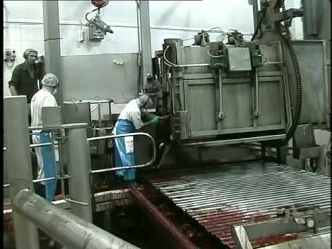 Food Equipment Australia Cattle Slaughtering Equipment - Part 1 Knocking Box to Bleed Rail