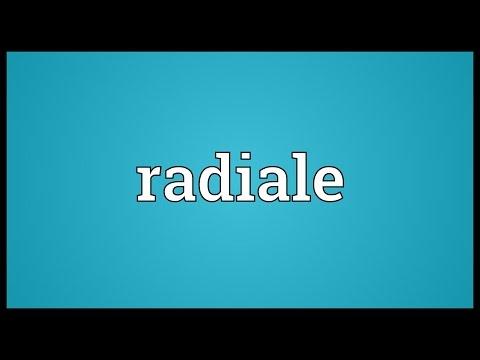 Header of radiale
