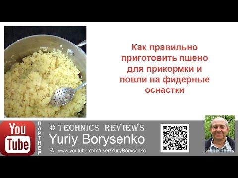 видео как приготовить прикормку из пшена