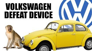 Volkswagen Gassed Monkeys To Prove Diesels Are Clean