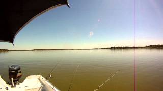 Lake tawakoni fishing guide capt michael littlejohn for Lake tawakoni fishing guides