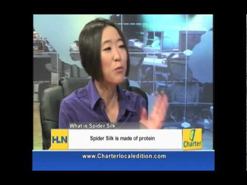 UCR Professor Cheryl Hayashi on Spiders and Spider Silks (pt. 2)