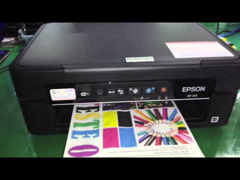 Epson XP 214 com Bulk Ink Instalado (Substituta XP204) - SULINK