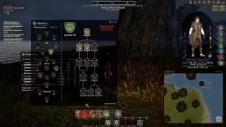 Shroud of the Avatar: Forsaken Virtues - Впервые в игре, смотрим изучаем. Думаем