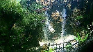 Double Air Terjun dalam Air untuk Dekorasi Aquascape | Underwater waterfall