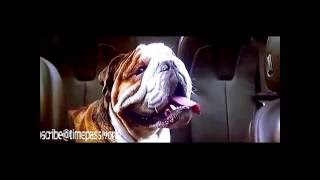 Dishoom movie  best comedy scene