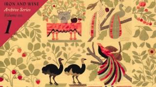 Watch Iron & Wine Two Hungry Blackbirds video