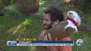 7 Action News helps reunite stolen dog with owner