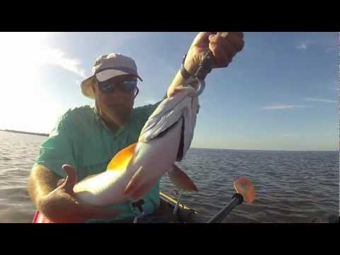 Kayak Fishing, Hidden Mangrove Tunnel, Trout, Redfish