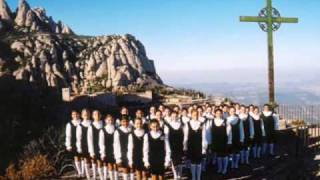 Vídeo 464 de Aviões do Forró