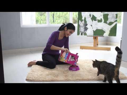 Kittypedia Episode 3 - Gimme Some Whiskas, Please