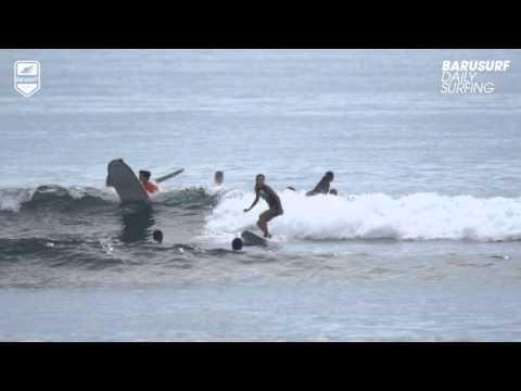 Barusurf Daily Surfing - 2016. 1. 24. Serangan