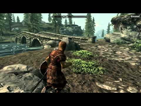 How to install naked nude mod for skyrim(on Mac!)