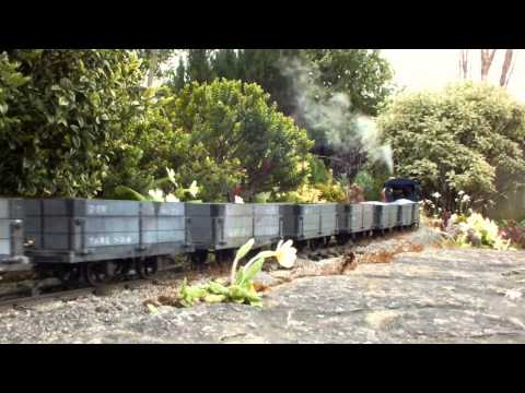 Live steam and Spring flowers on a Dorset garden railway