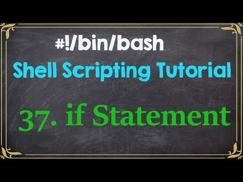 if Statement Shell Scripting Tutorial for Beginners-37