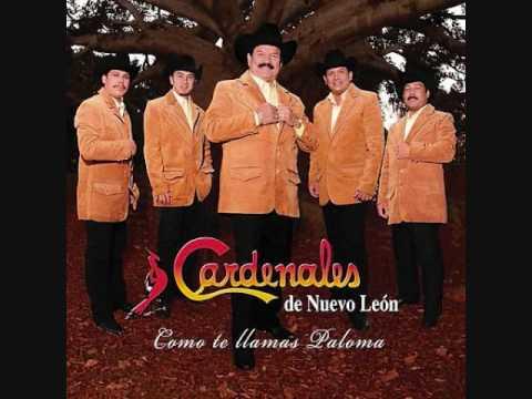 Cardenales de Nuevo León - Es Que Te Quiero
