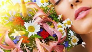 Musikapostel - Nur Eine Blume