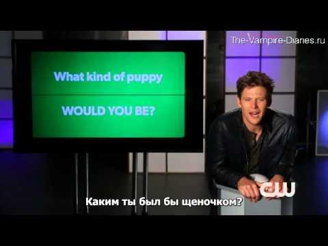 The Vampire Diaries    CWestionator   Zach Roerig русские субтитры