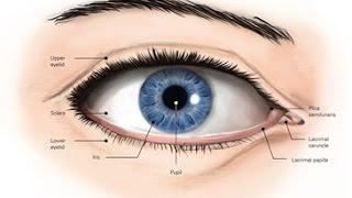 Техники остеопатии на глазах - улучшение зрения, дальнозоркость и близорукость, глаукома, катаракта