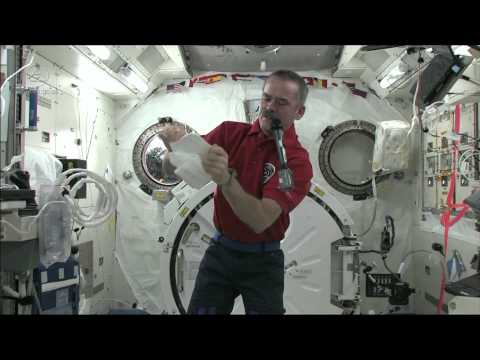 Getting Sick in Space