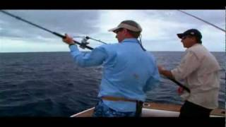 :: Fox Sport Fishing TV :: Trek Boat Vs Yellow Fin Tuna