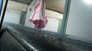 Punjab-Mumbai Railway Scandal - Unseen Footage
