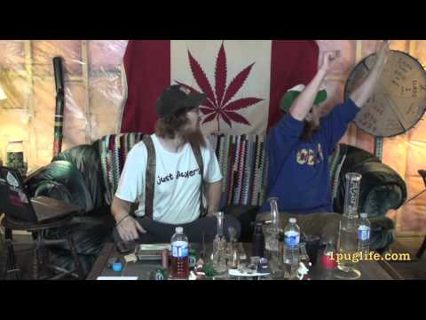 THC episode-288 completely cocked situations