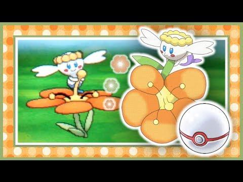 Shiny White Flabebe 4 Shiny Orange Flabébé in
