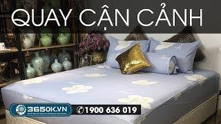 Chăn ga màu tím nhạt | Drap giường màu tím KOSHI hoa trắng KS1L-132
