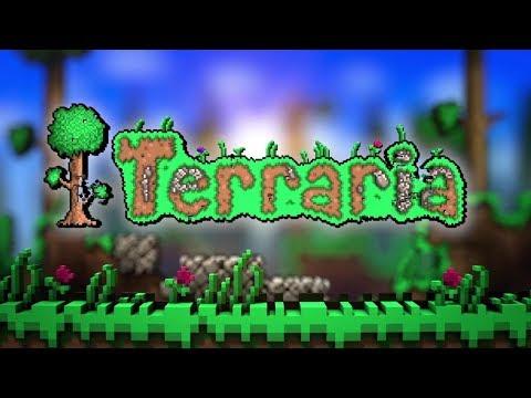Да это Terraria!!!(Эксперт)