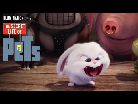THE SECRET LIFE OF PETS Soundtrack - Song/Music List
