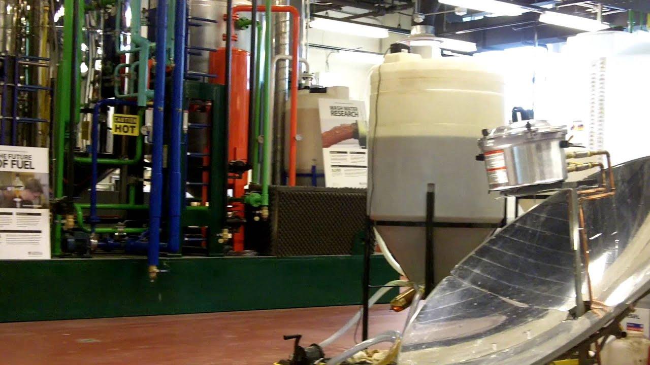 biodiesel lab report