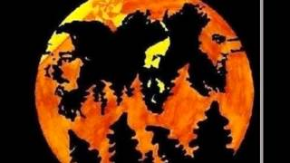 Asteroid - II [Full Album]