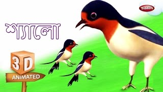 Swallow Rhyme in Bengali | বাংলা গান | Bengali Rhymes For Kids | 3D Bird Songs in Bengali | Poems
