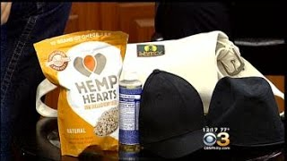 Talk Philly: Riley Cote Discusses The 3rd Annual Hemp Heals Music Festival