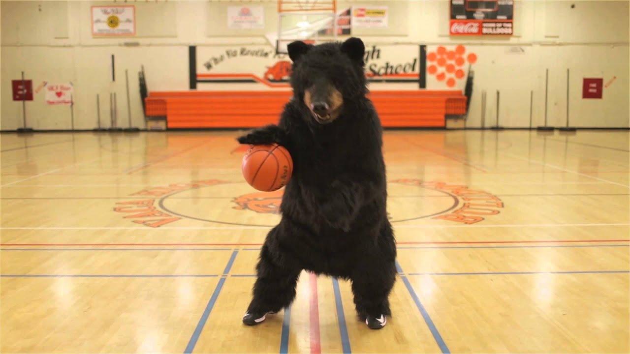 Black Bear Diner - Basketball Bear - YouTube