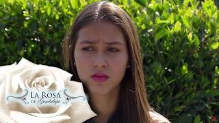 Edgar le presenta a Gabriela  a su mamá | La Rosa de Guadalupe