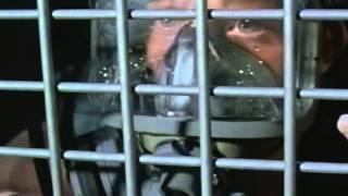 Deep Blue Sea Trailer 1999