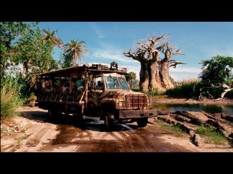 ♥♥ Kilimanjaro Safaris at Walt Disney World's Animal Kingdom (in HD)