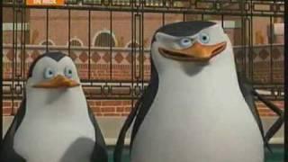 Los Pinguinos de Madagascar Rico