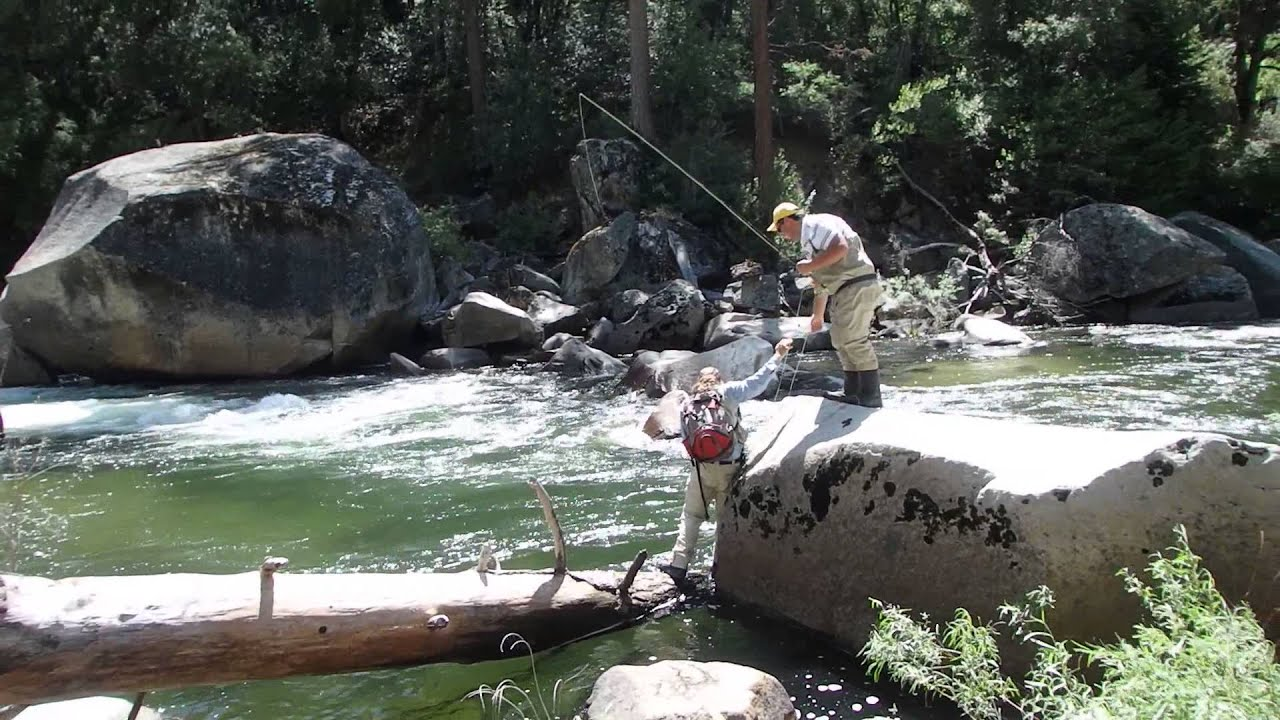 Fly fishing yosemite national park california fishing board for Fishing in yosemite