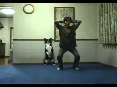 Un chien qui fait de la gym avec son ma tre youtube for Aparatos para hacer ejercicio