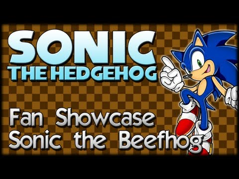 Sonic Fan Showcase : Sunak the Beefhog