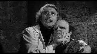 Alan Spencer on Young Frankenstein