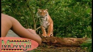 Dans la Jungle de Seonee - Mowgli - Part 1