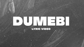 Ever wondered what I was saying in Dumebi? Wonder no more (  Dumebi official lyric video )