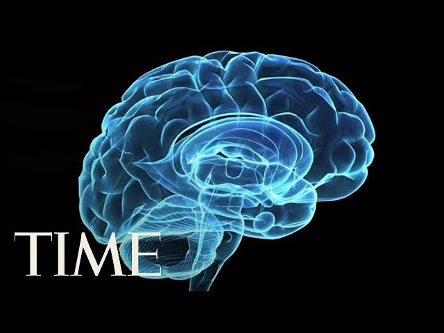 7 Ways To Keep Your Brain Sharp As You Age: Maintaining A Healthy Diet & Being Active Help   TIME