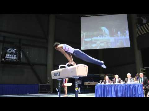 Akash Modi - Pommel Horse - 2012 Winter Cup Finals