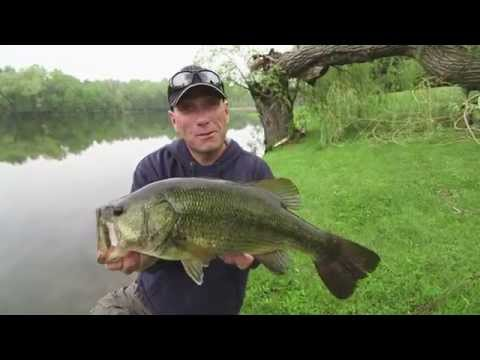 Avoiding Dead Casts for Pond Dwelling Largemouth - Dave Mercer's Facts of Fishing THE SHOW